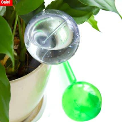 Different Ways to Water Your Vegetables