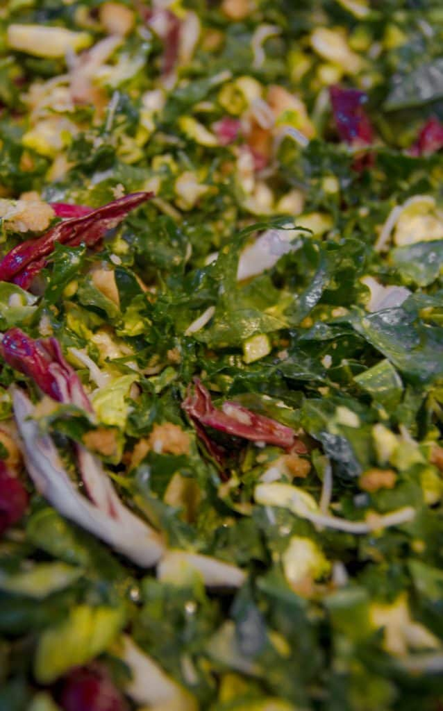 Vegetarian Dishes - Salad As A Healthy Meal